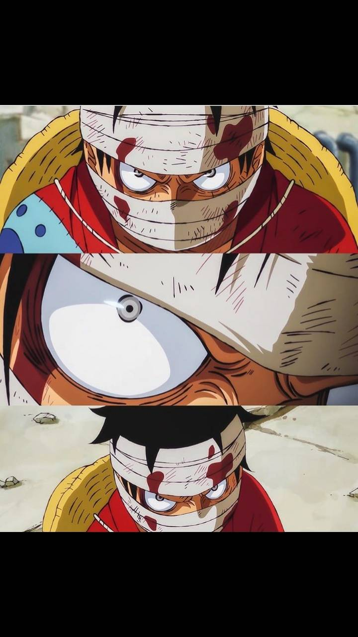 Luffy captured
