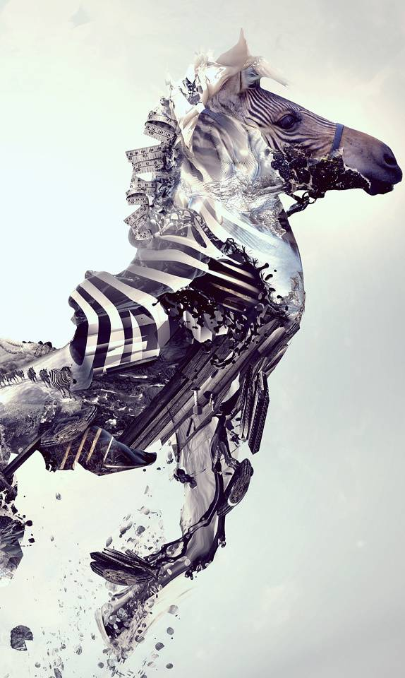 Abstact Zebra