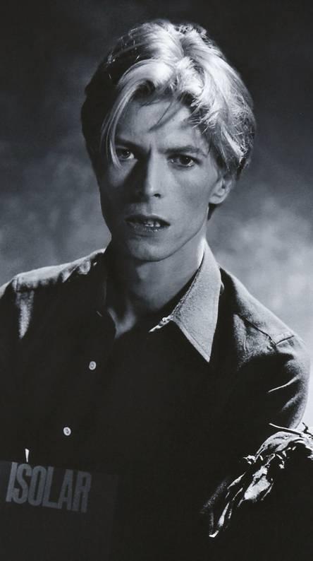 David Bowie Jacket