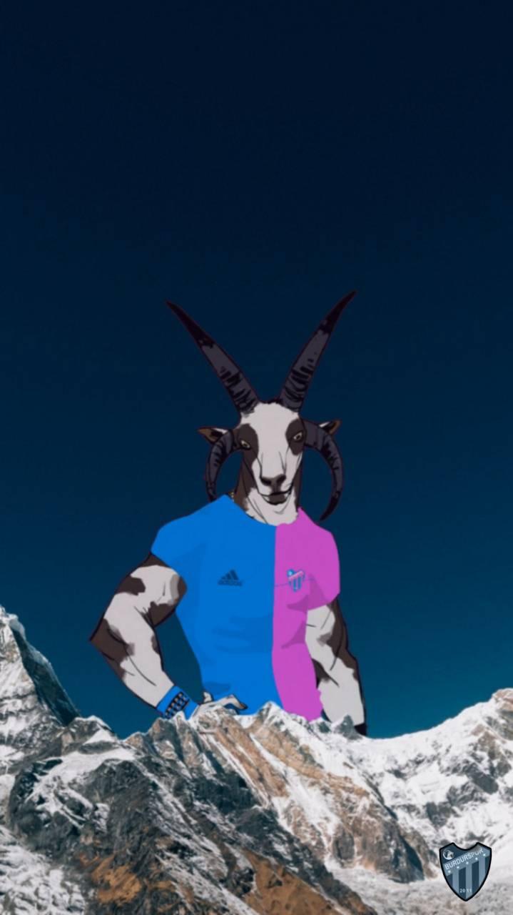 Goat Burdur Spor