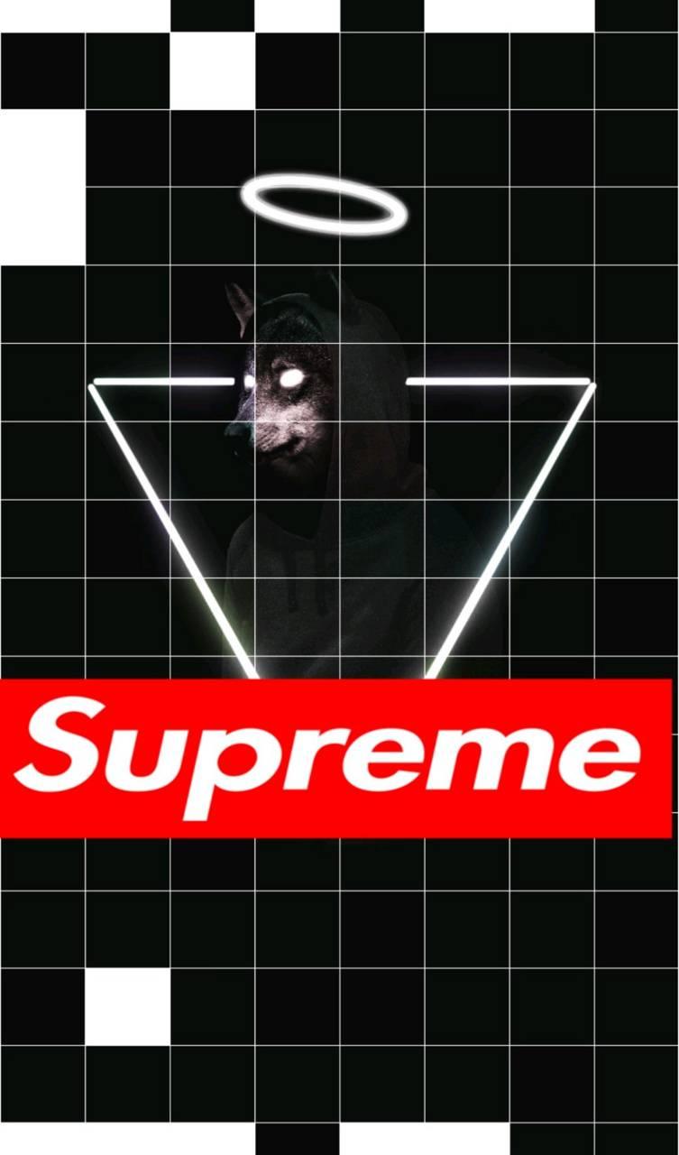 Suprime wolf