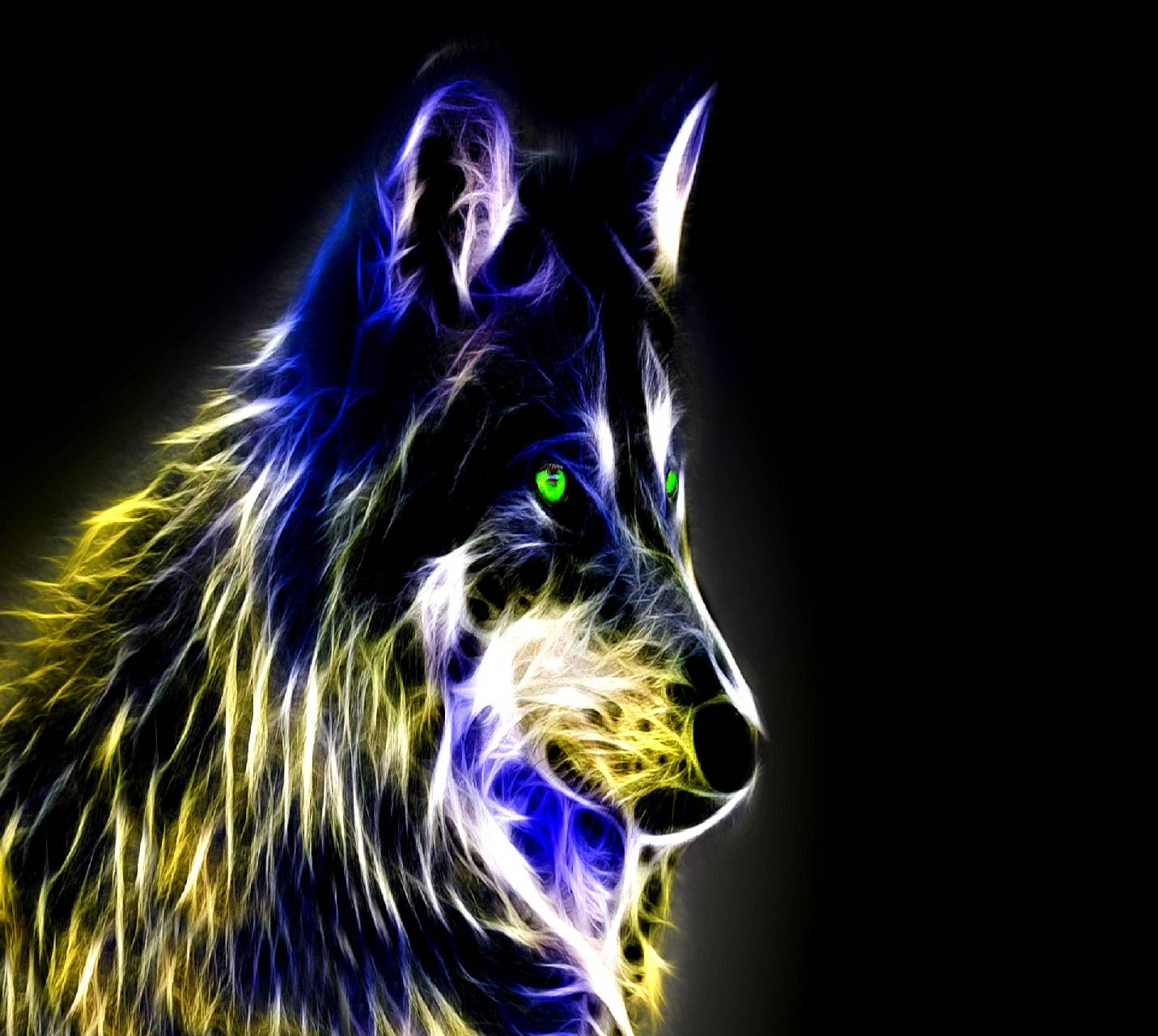 wolf---------------