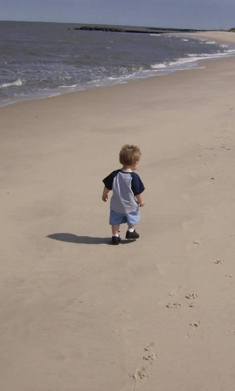 Solitude On Beach