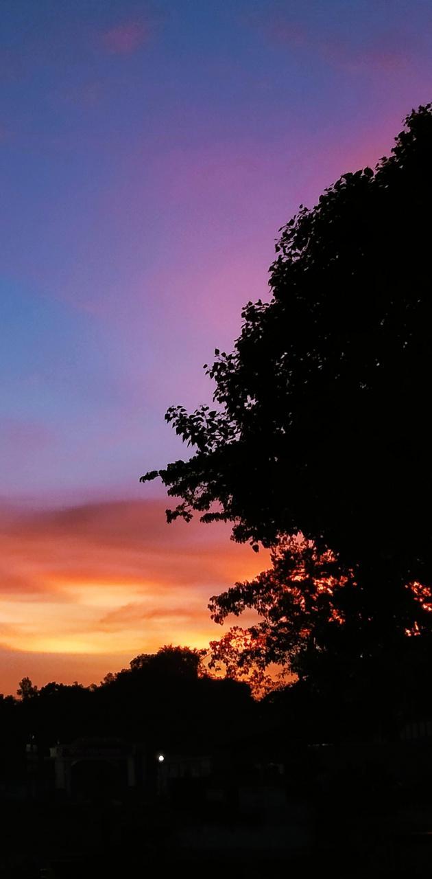 Evening Moment