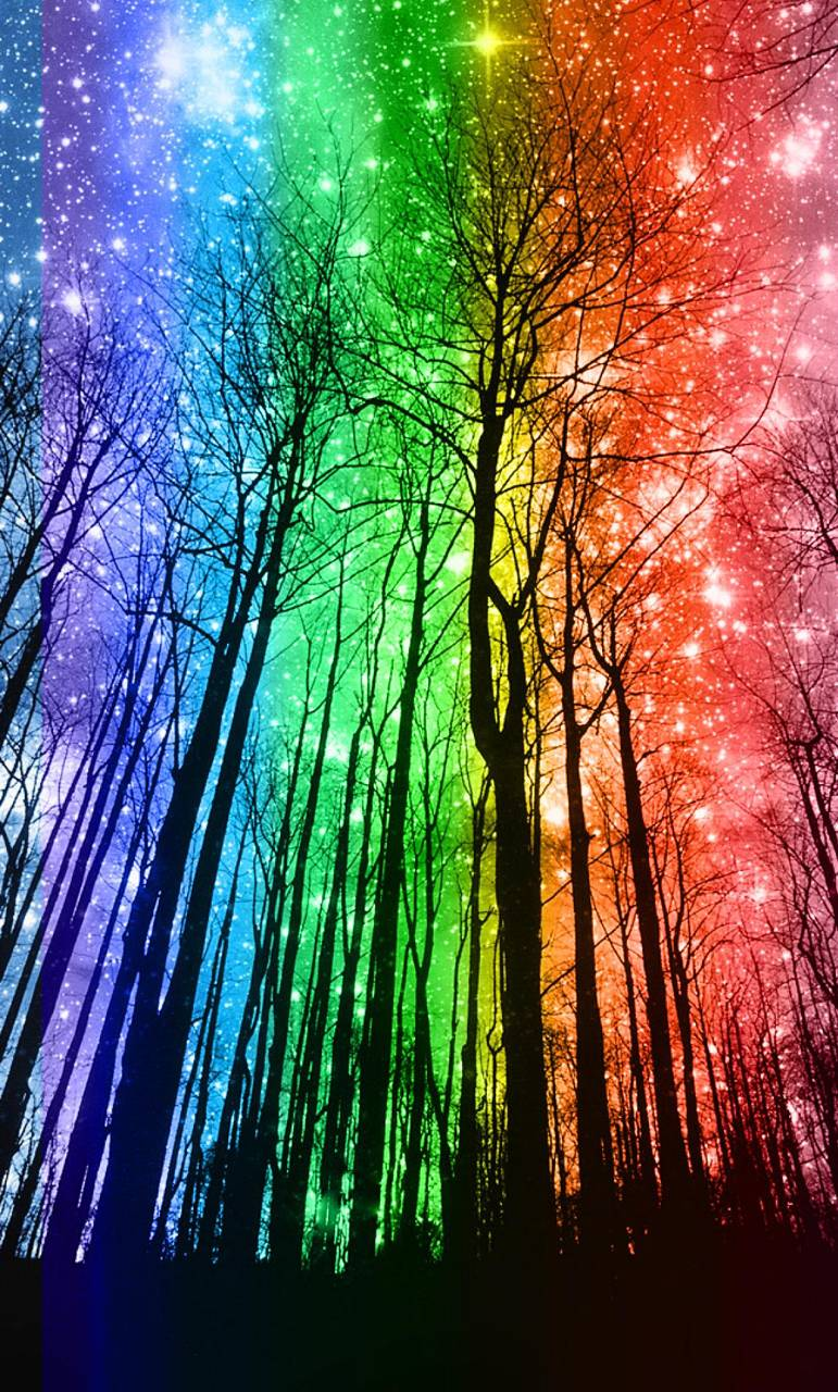 rainbow forest wallpaper by samantha80 - bf