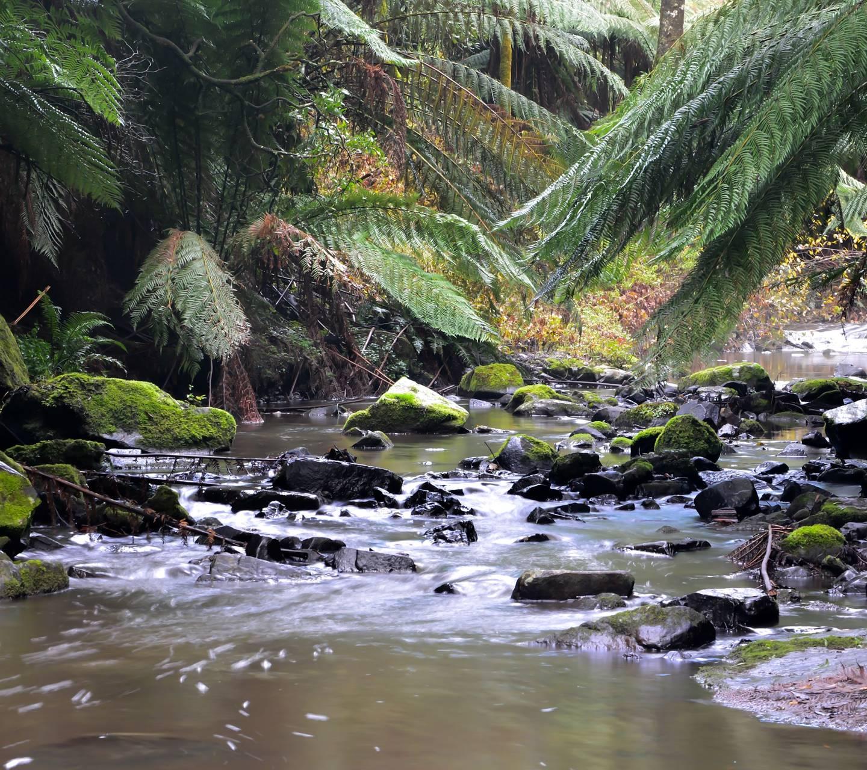 Turton Creek