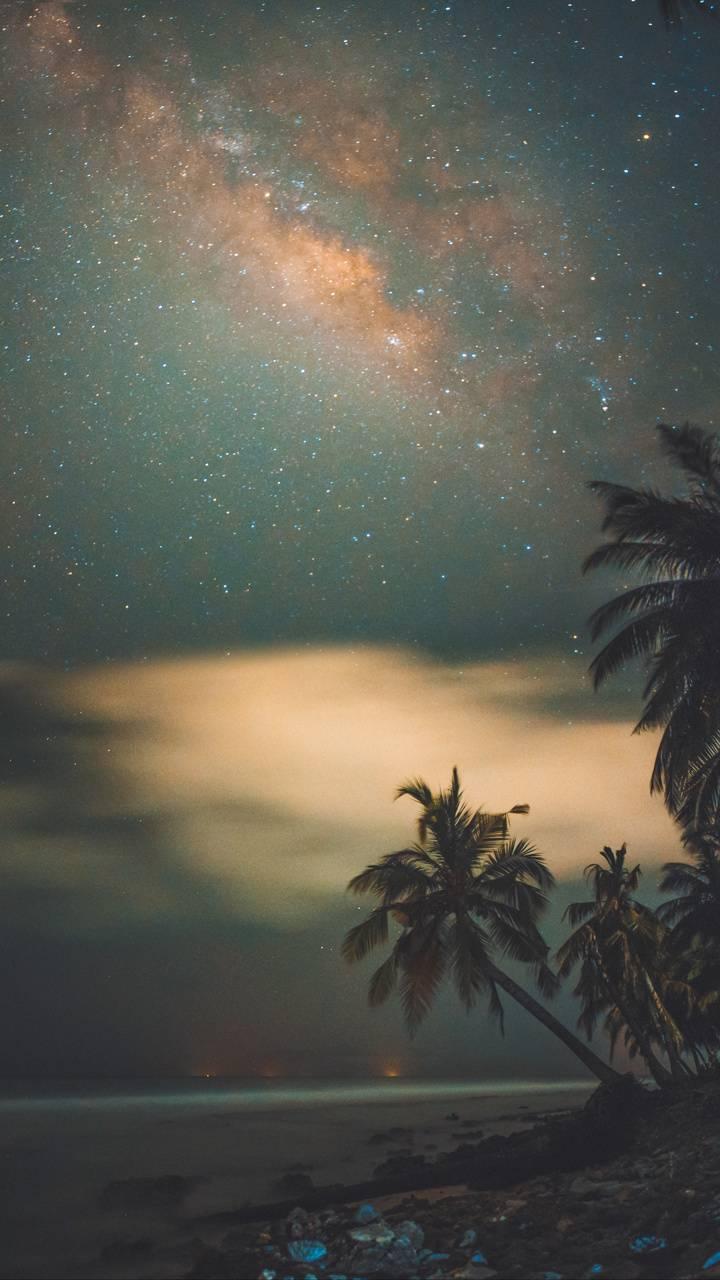 Exotic Galaxy