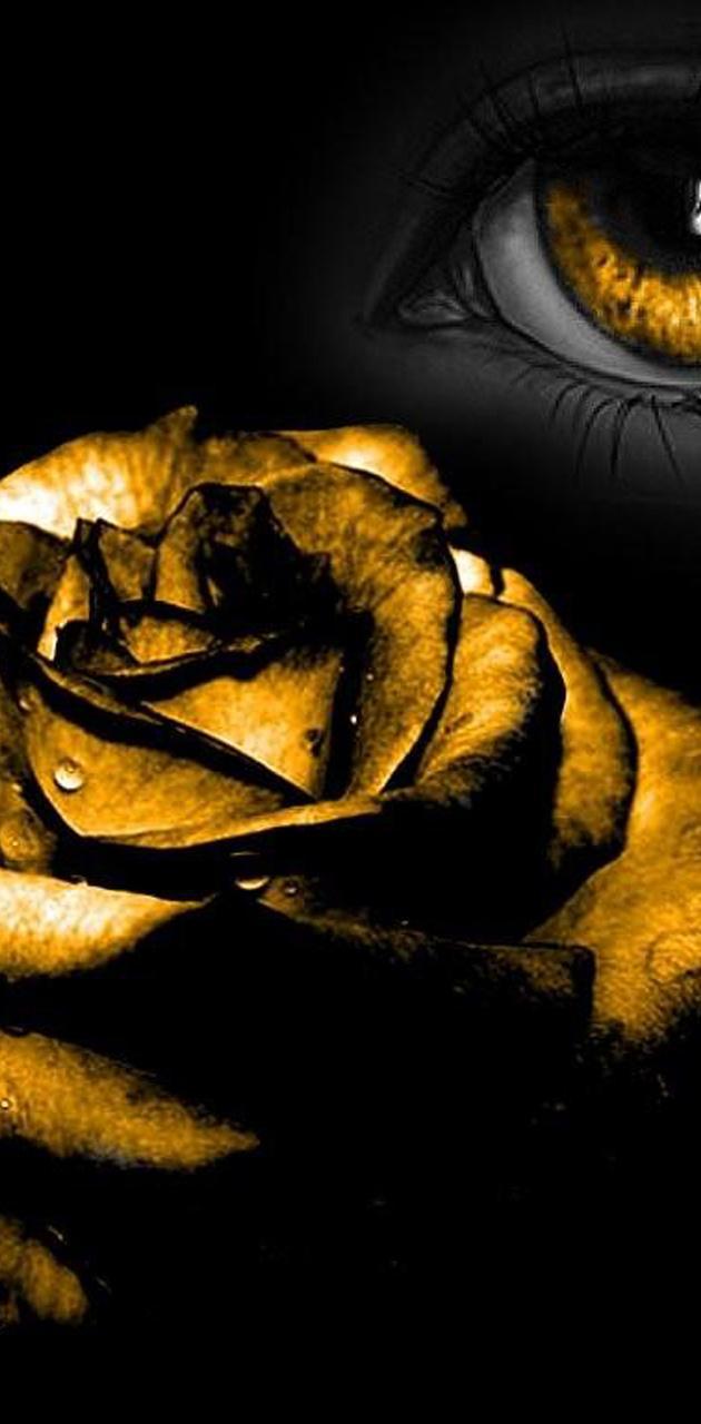 Golden Eye Rose