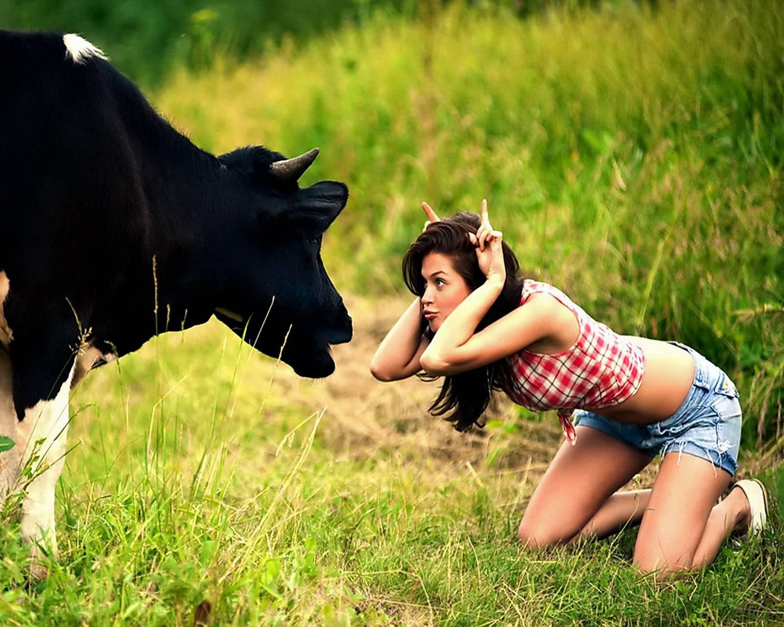 Girl Vs Cow
