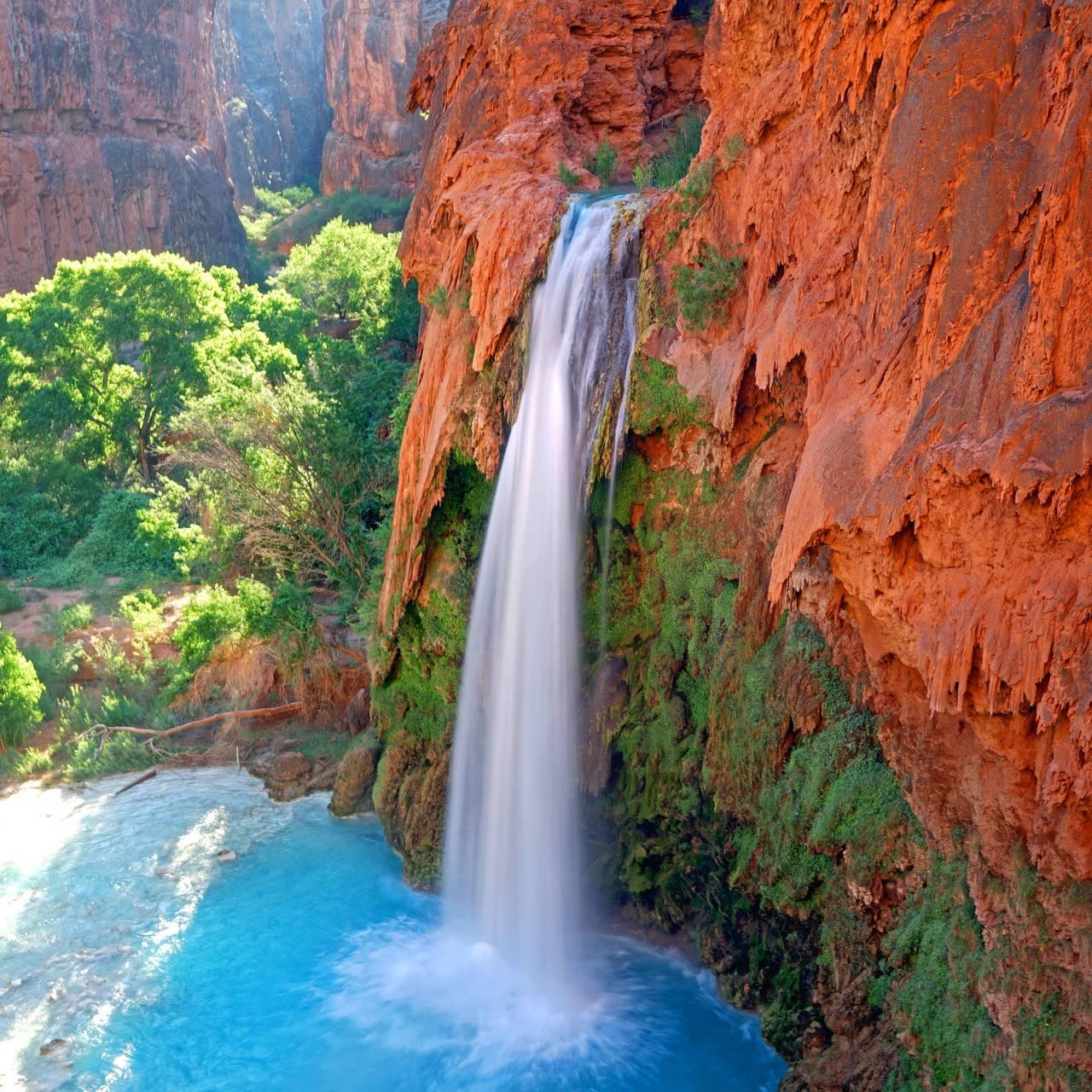 Canyon Oasis