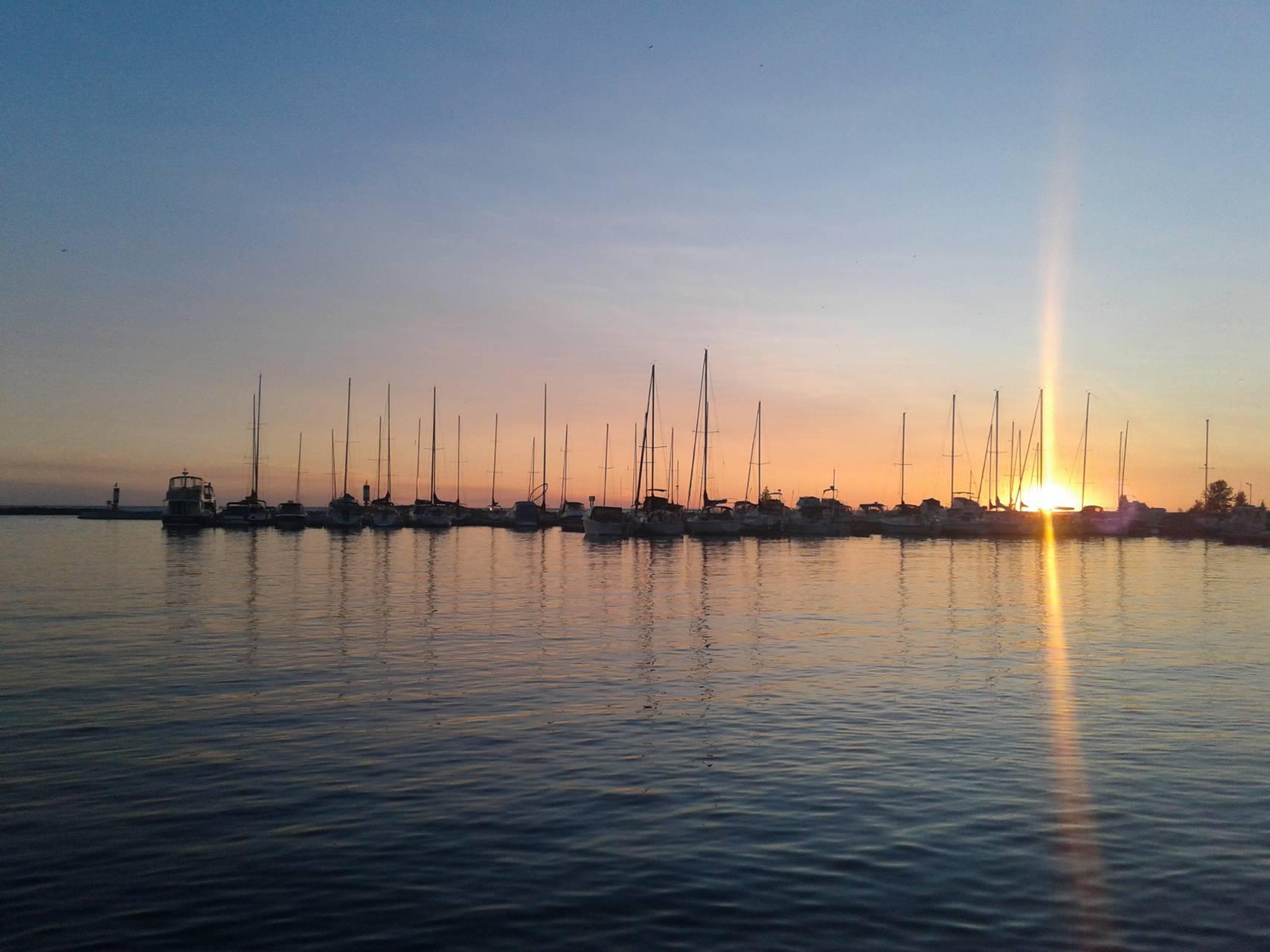 Harbour sun