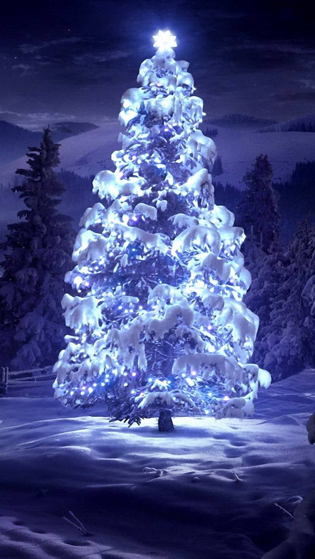 light on top tree