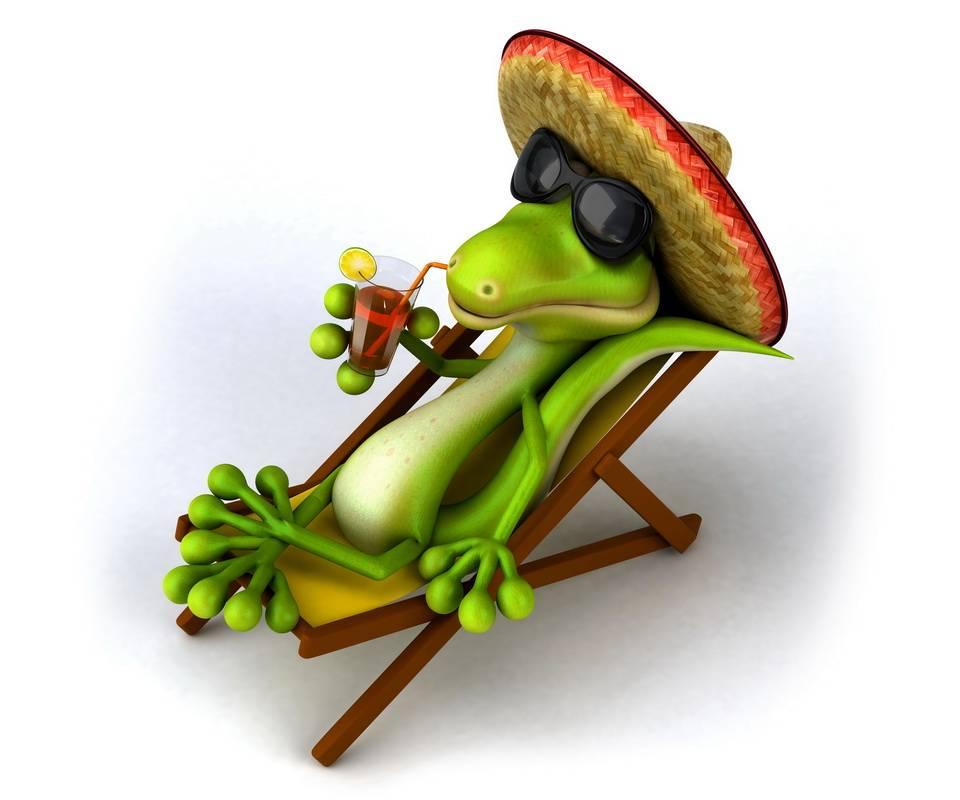 Relaxing Reptile