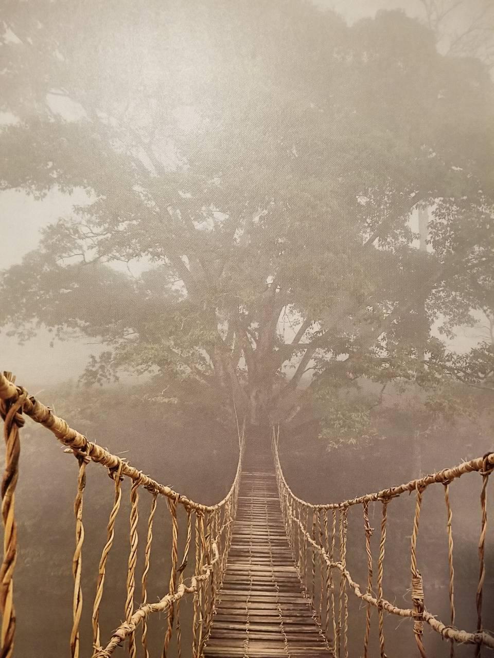 Rope drawbridge