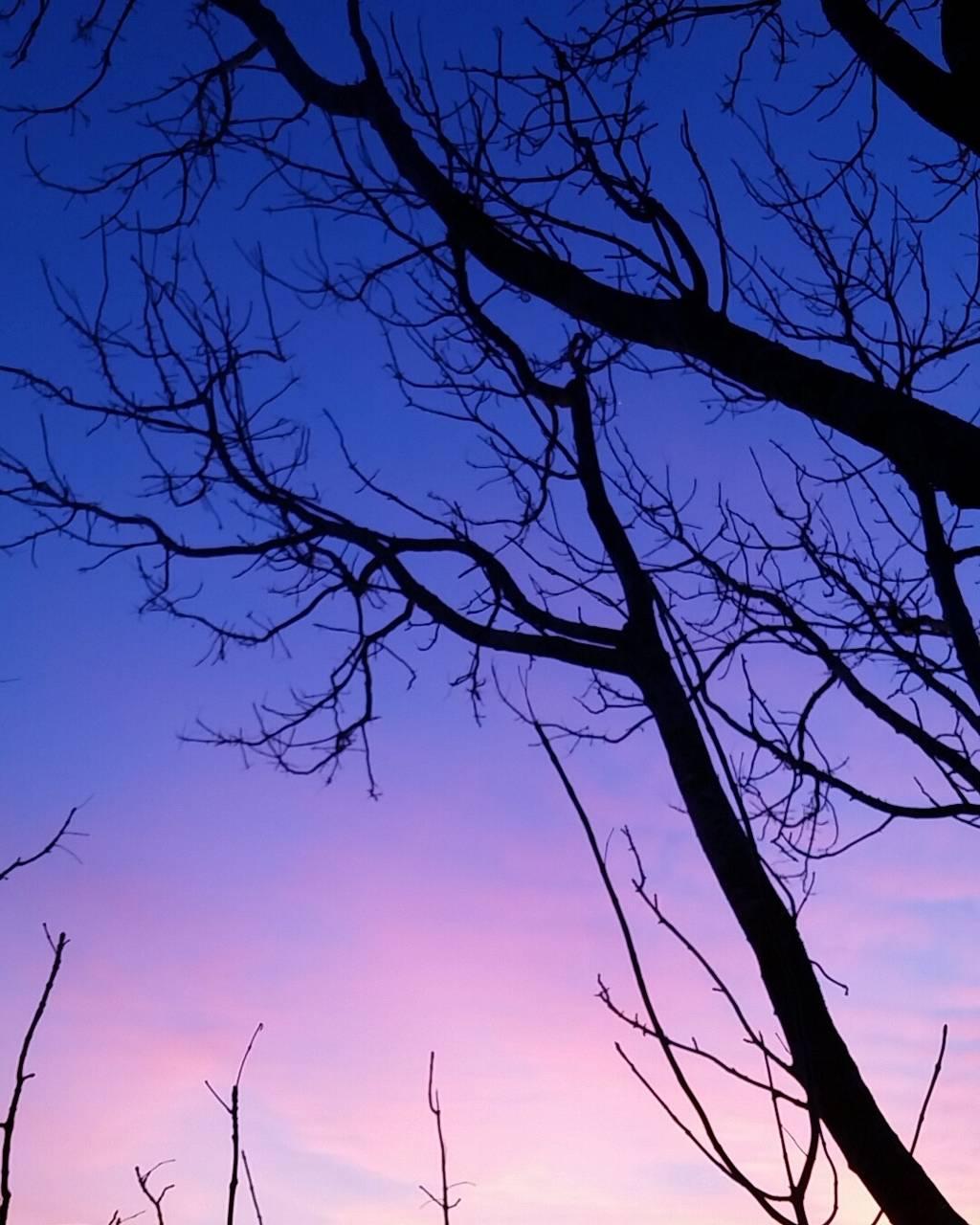 Purple feeling