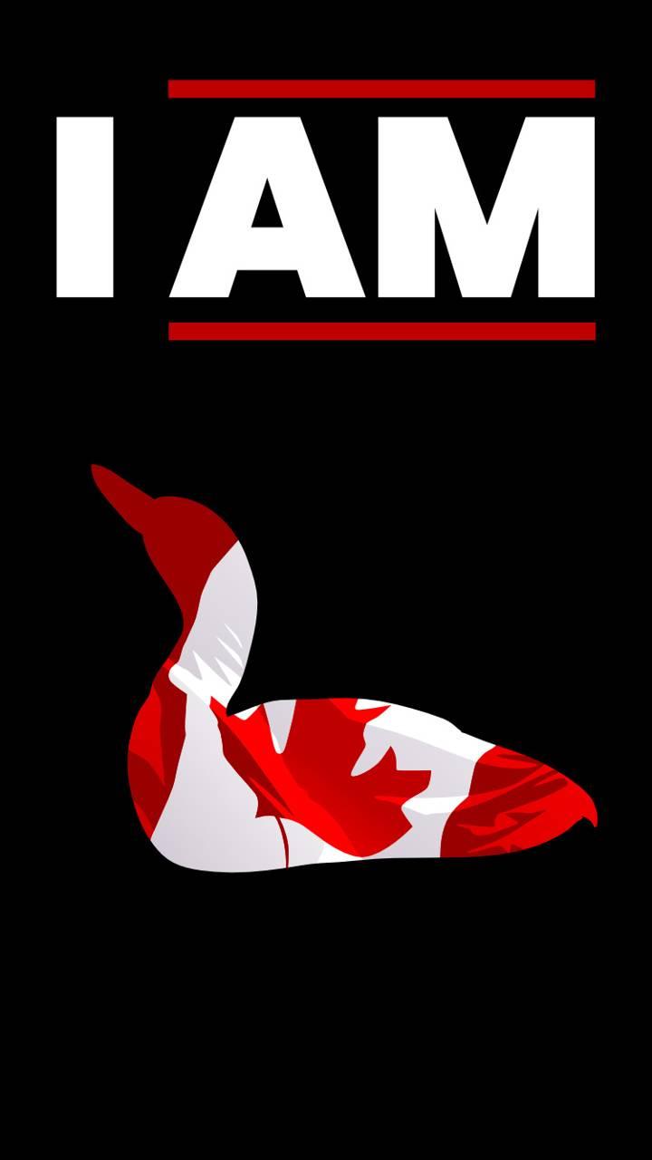 Canadian Loon