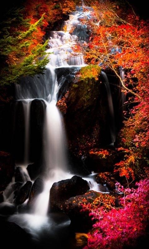 hd water fall view