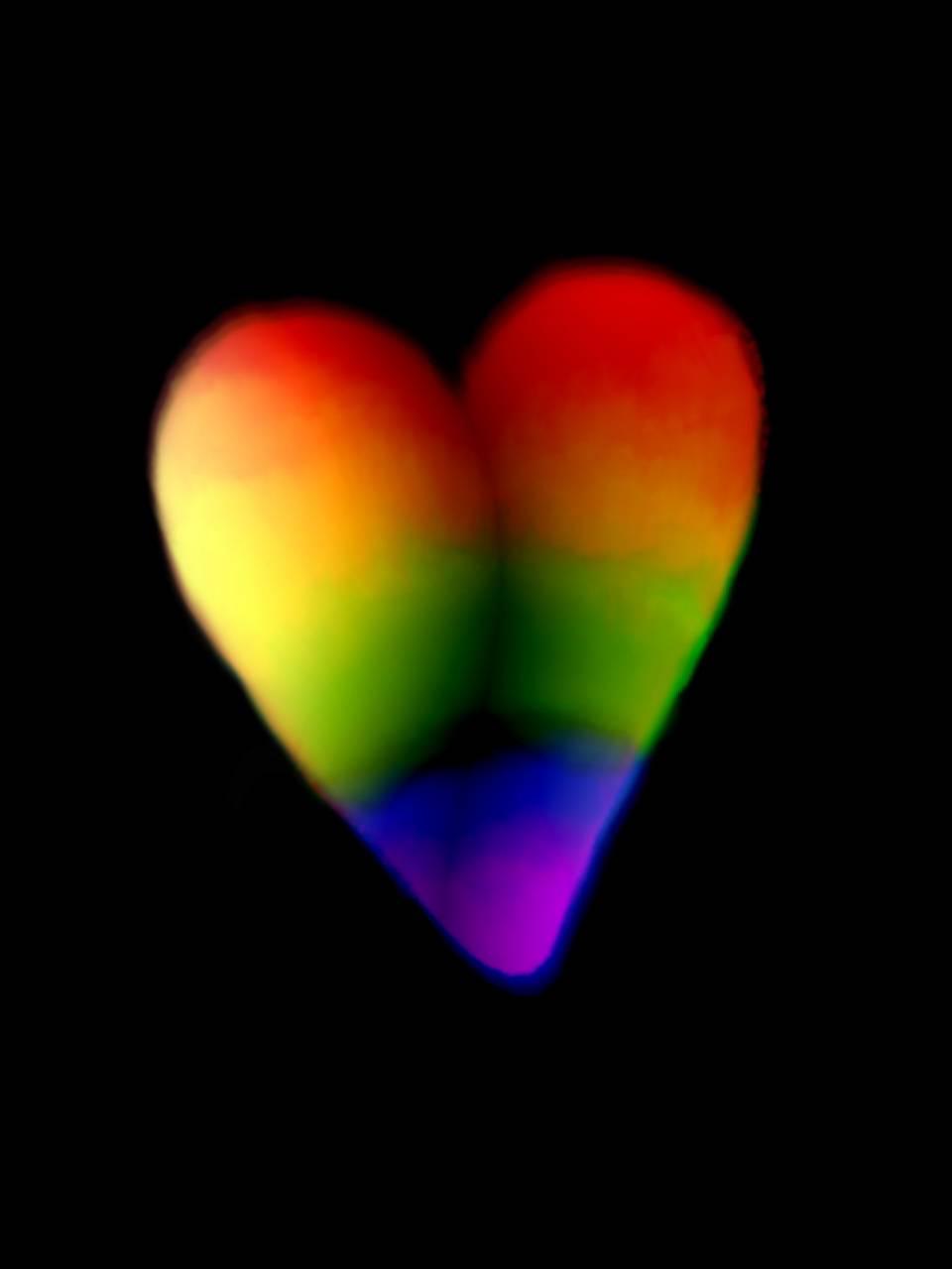 Rainbow heart 2021