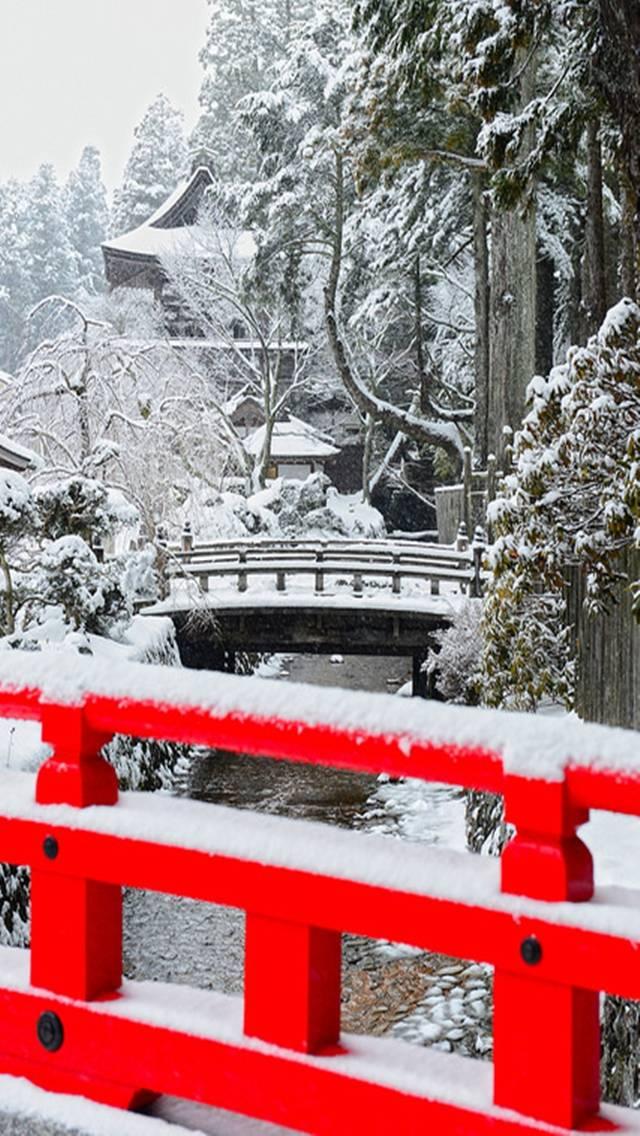 Snowy Lanscape