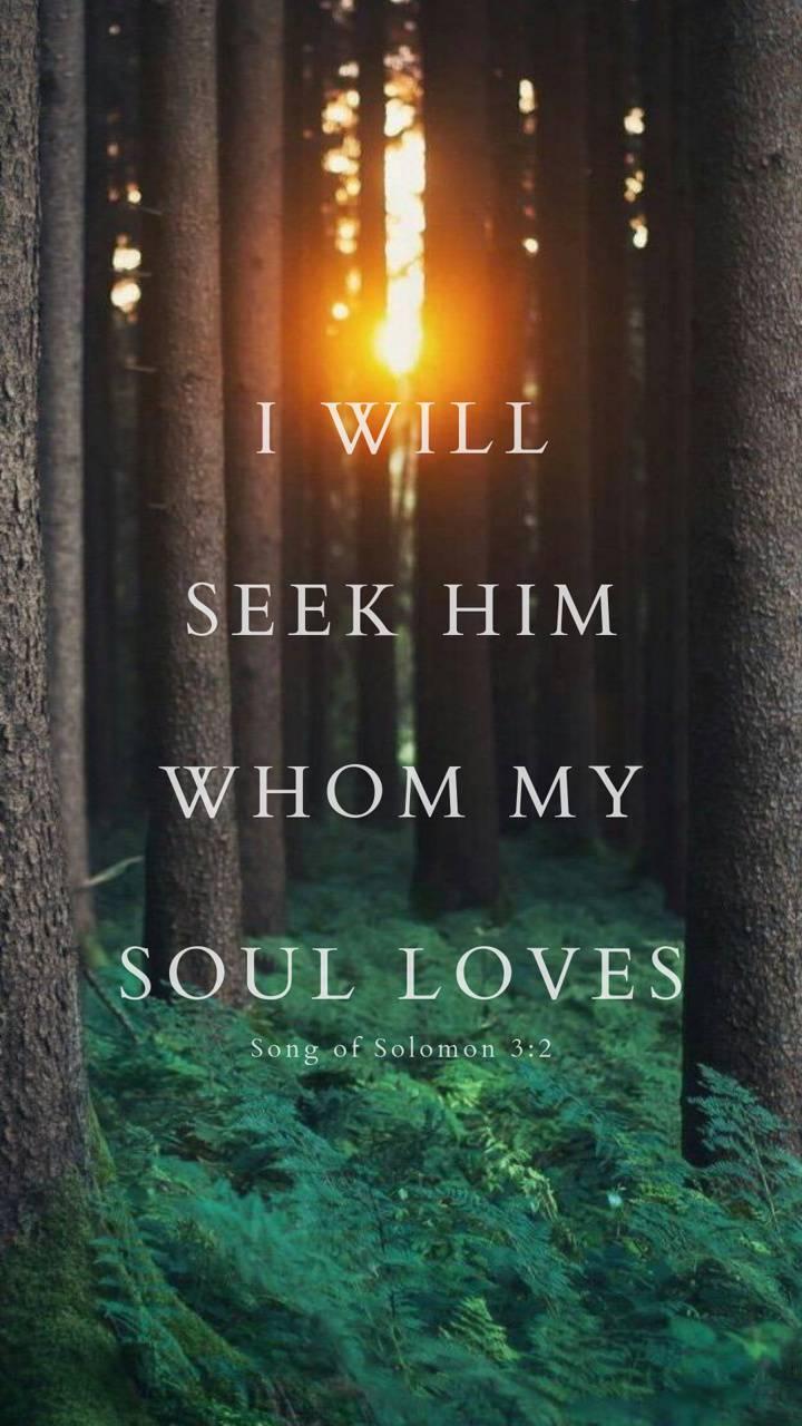 Love of my Soul