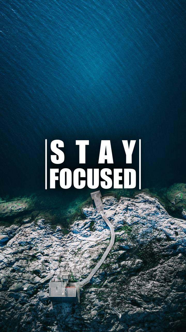 Stay Focused 2