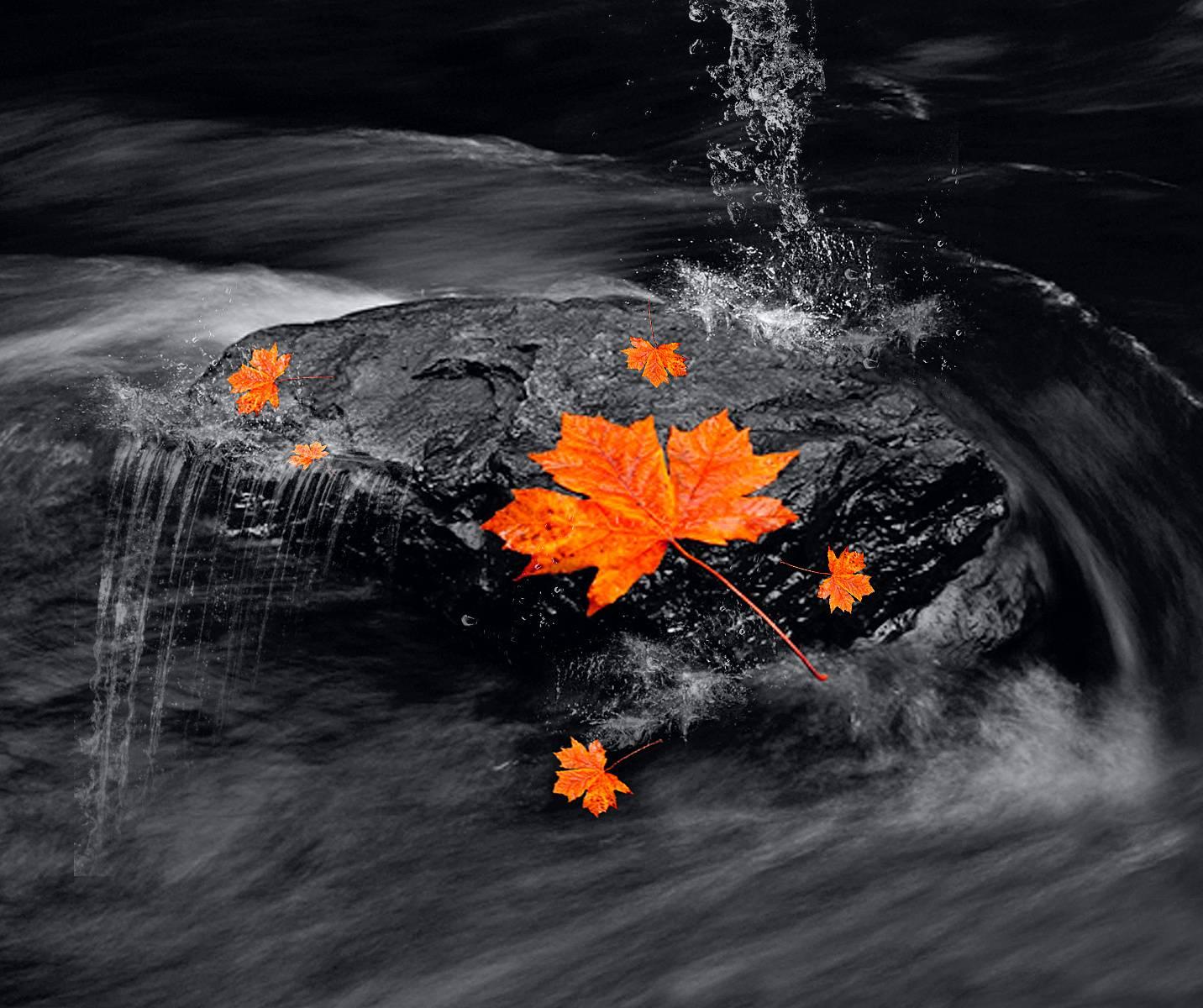 Autumns Return