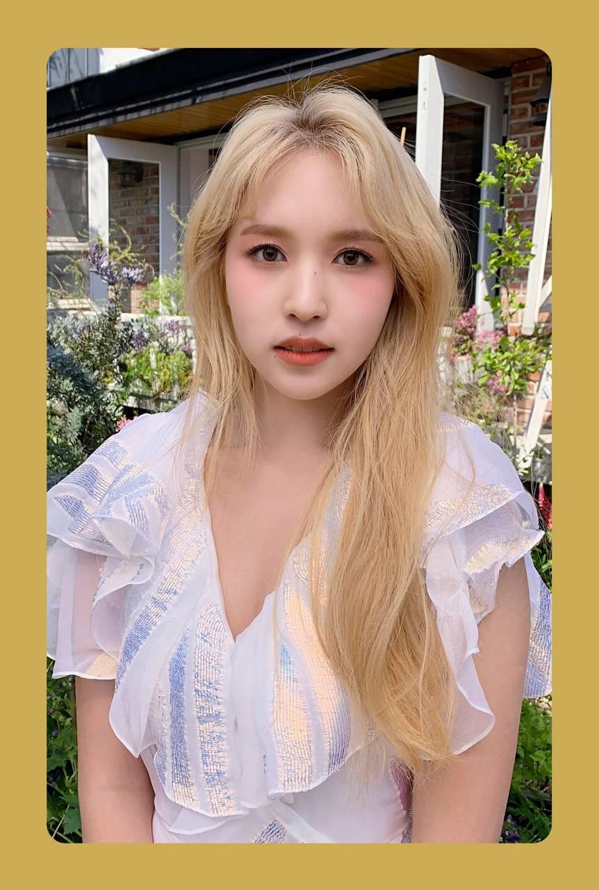 Twice Mina pc