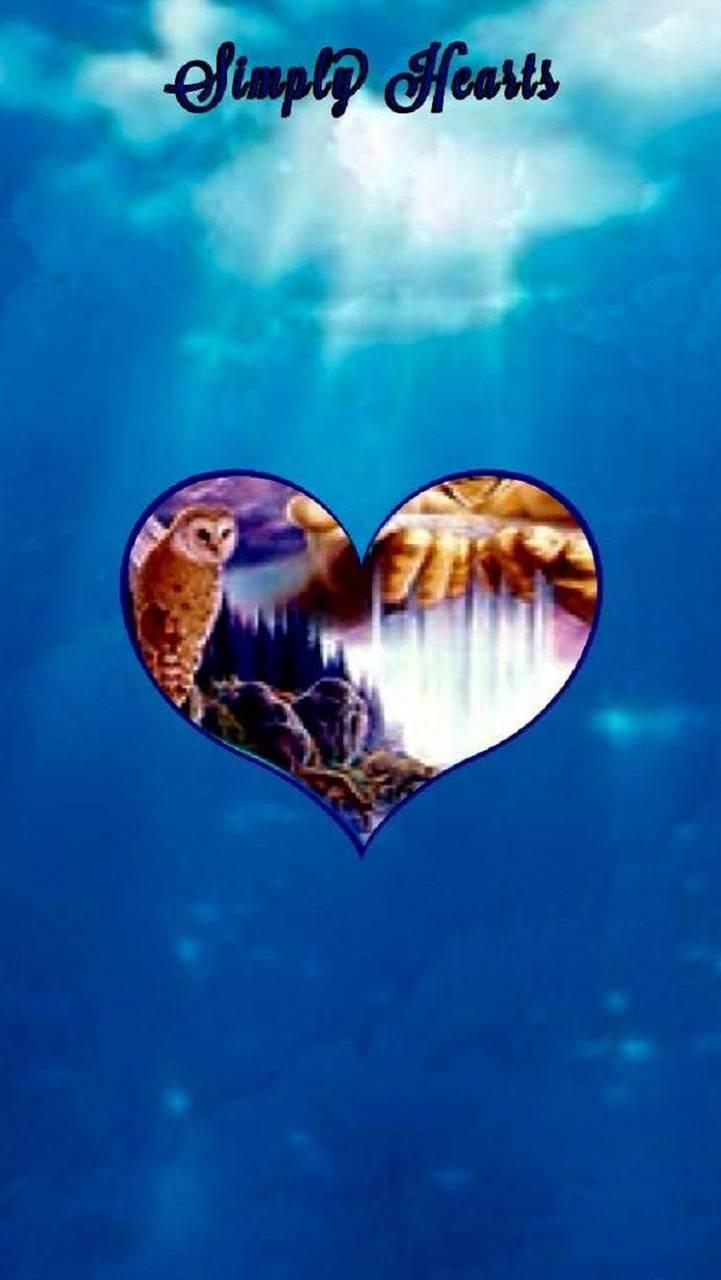 Simply hearts NA 3