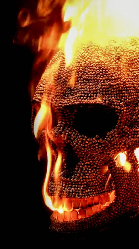 fire skulls wallpapers free by zedge