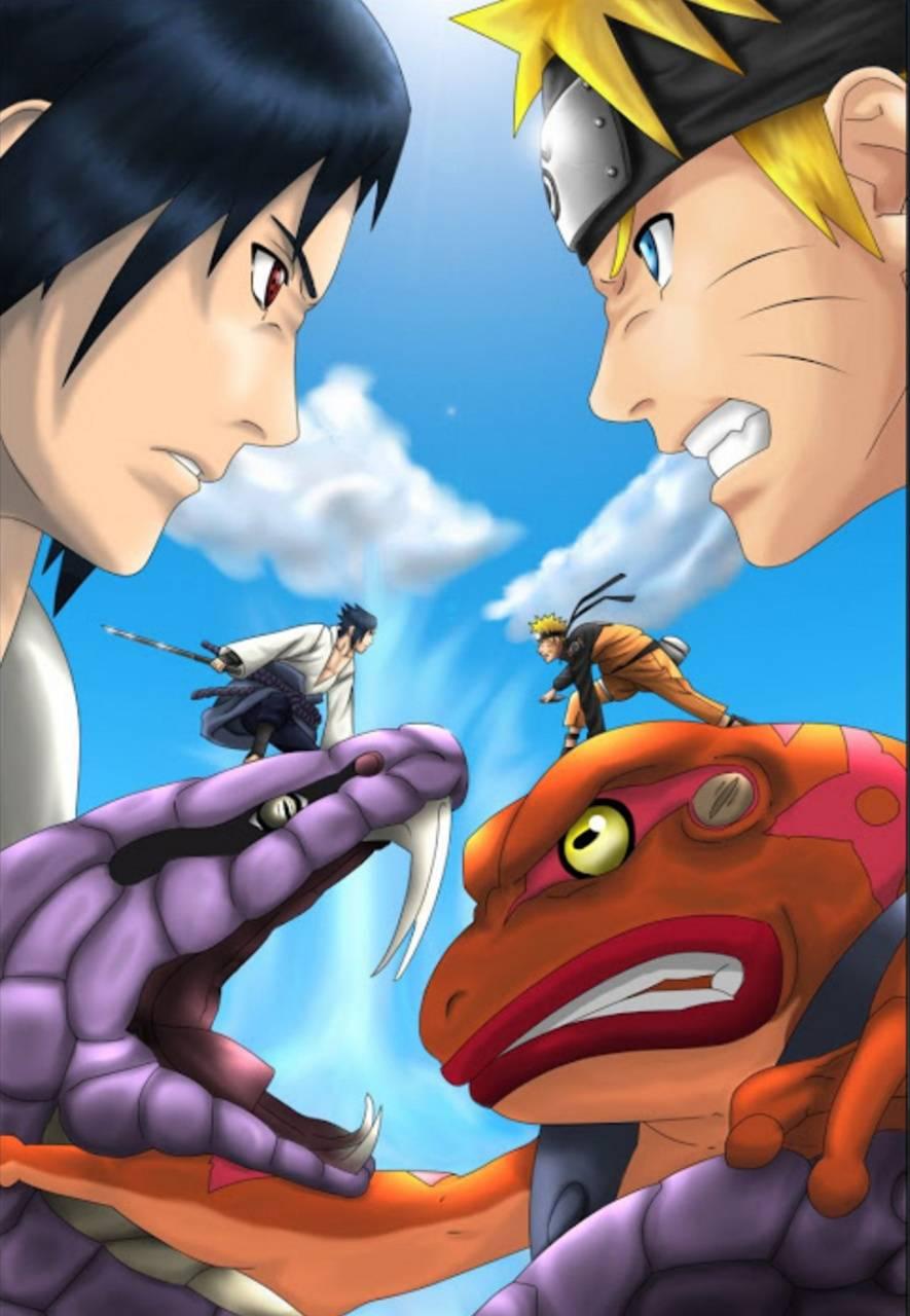 Naruto vs Sauske