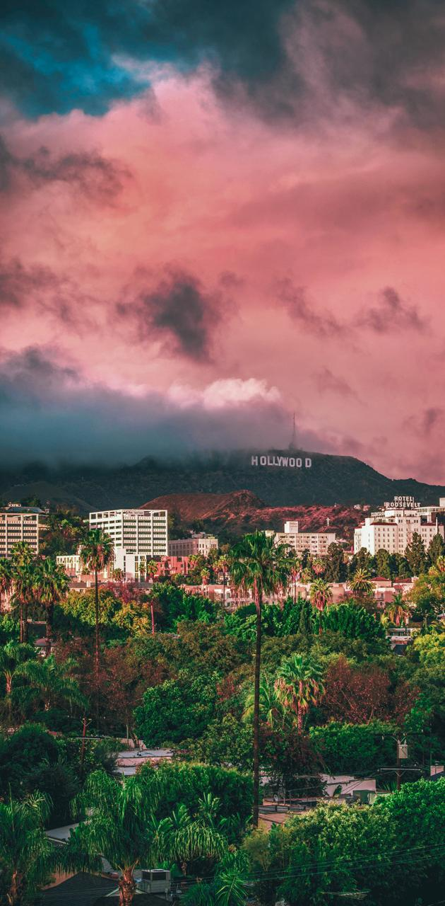 Hollywood nature