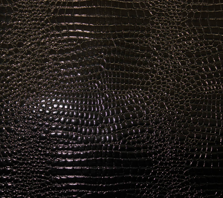 Black Crocodile Wallpaper By Dudeski1988 5f Free On Zedge