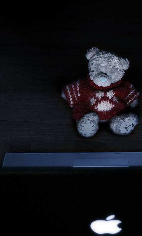 Teddy And Mac Laptop