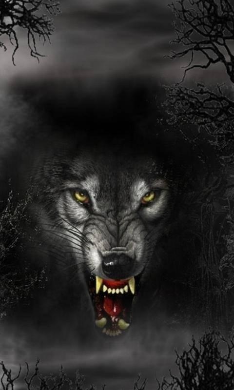 Bad Black Wolf Wallpaper By Clemkrym 02 Free On Zedge