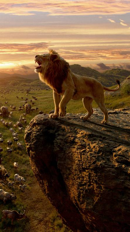 The Lion King 2019 Ringtones And Wallpapers Free By Zedge