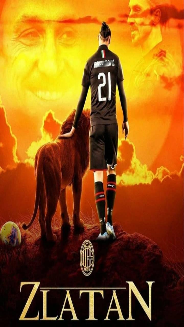 The Zlatan king