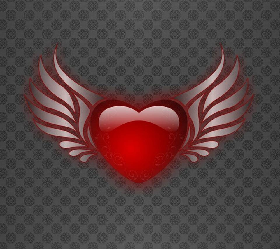 Red Heart Gray Wings