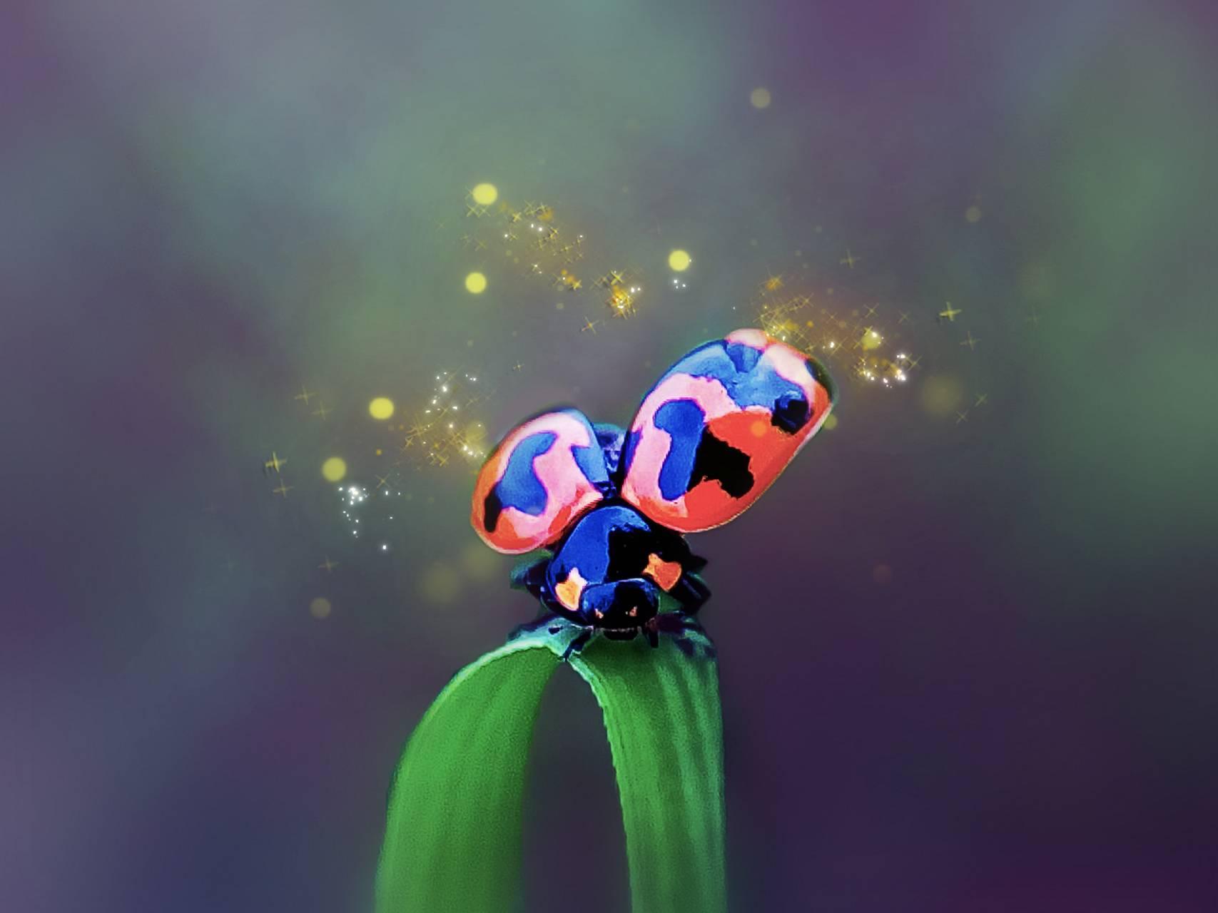 Ladybug Sparkle
