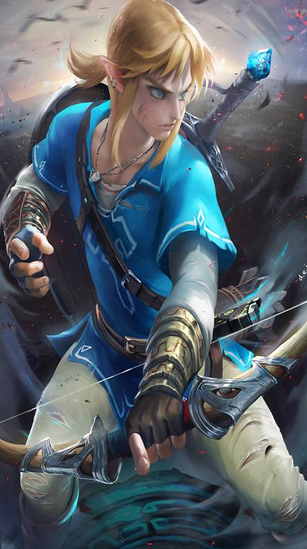 Link Botw Zelda