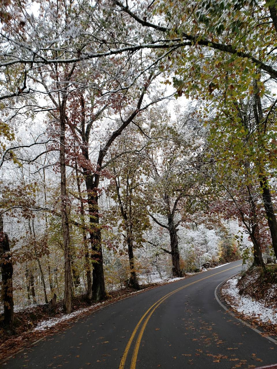Winter plus fall