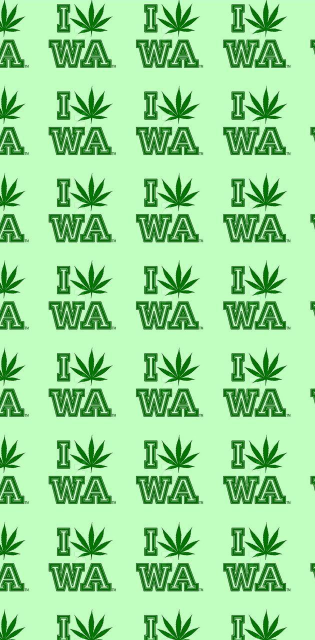 WA is W**D