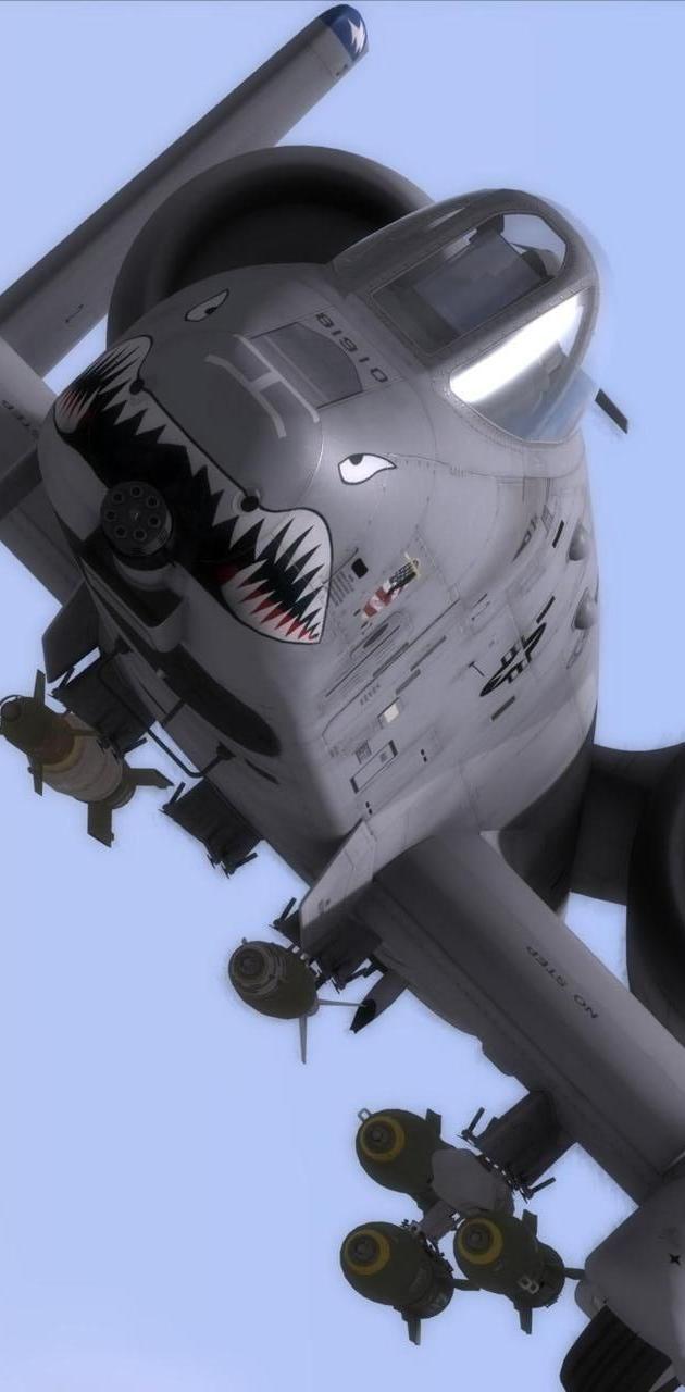 A-10 Thunderbolt jet