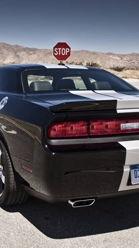 Charger Black