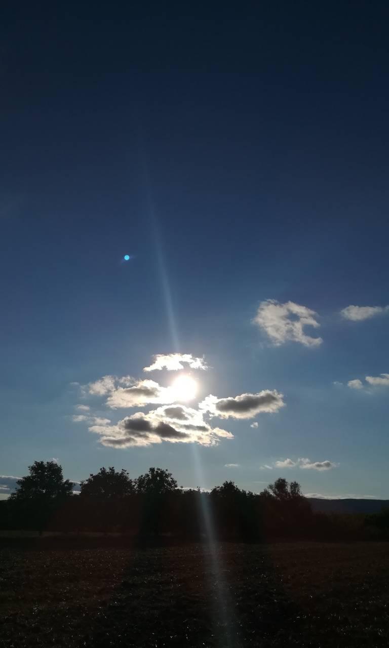 Sunshine at summer
