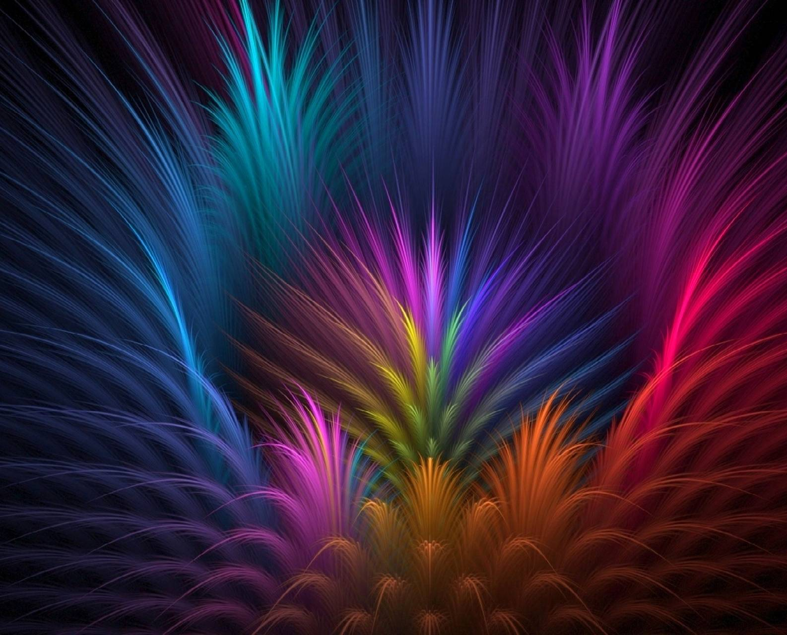 Feathers- Colors