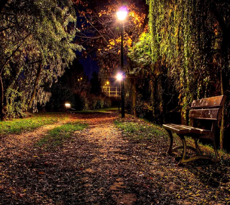 night --------