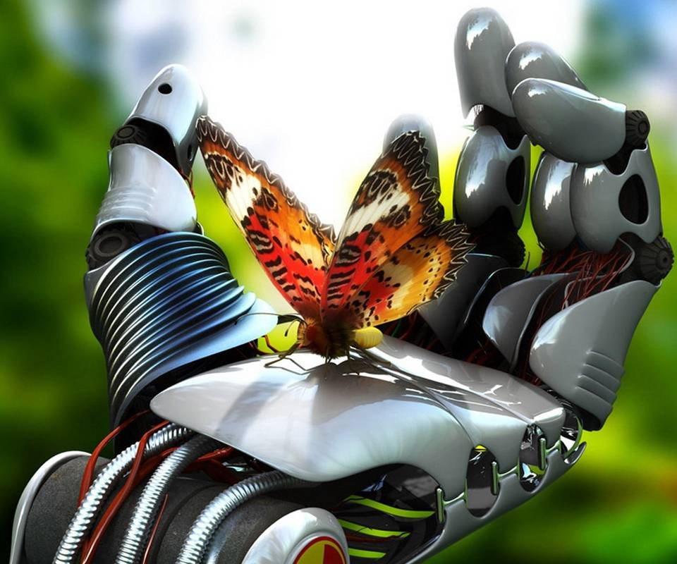 Butterfly And Robot