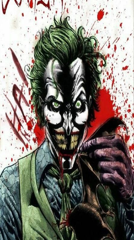 Mr J bat sharing