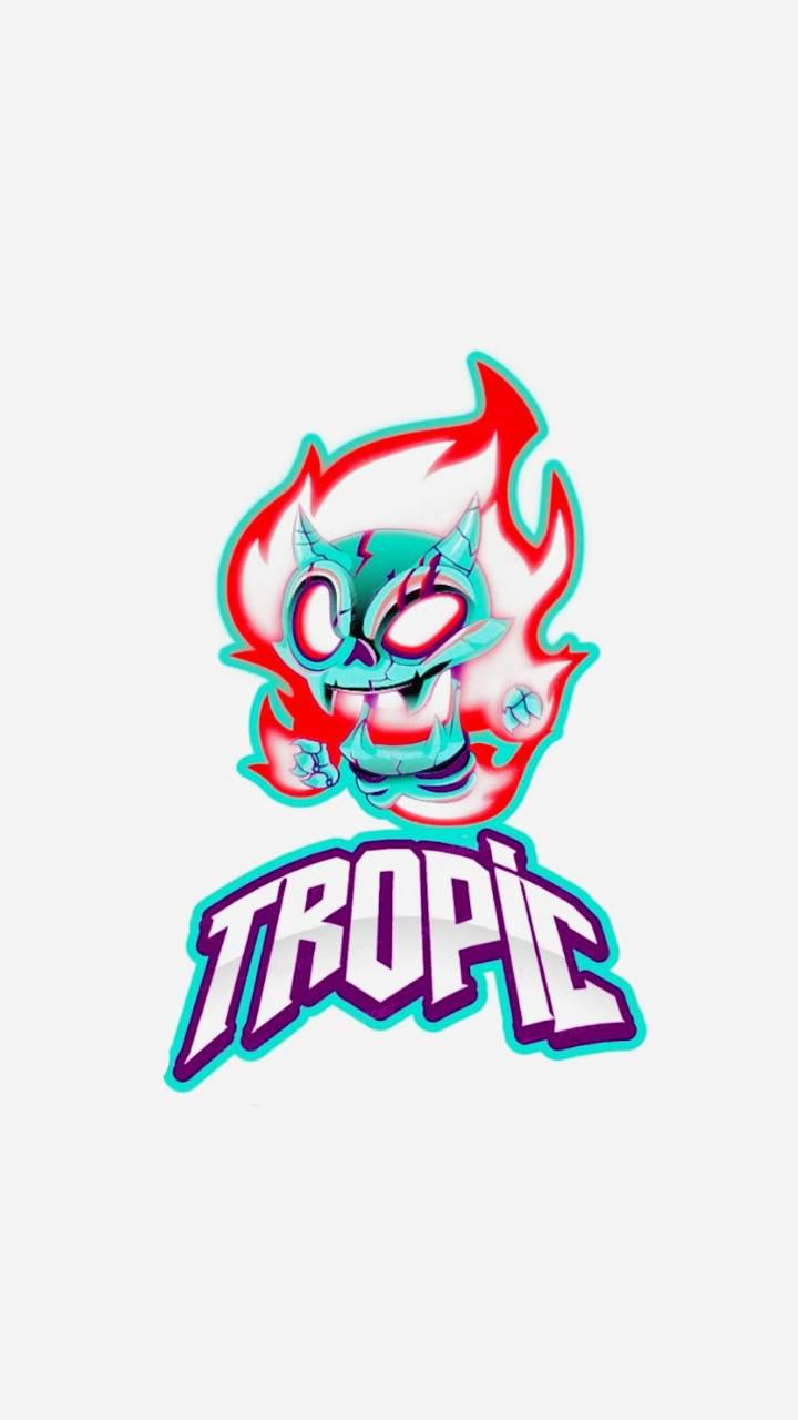 Tropic 20