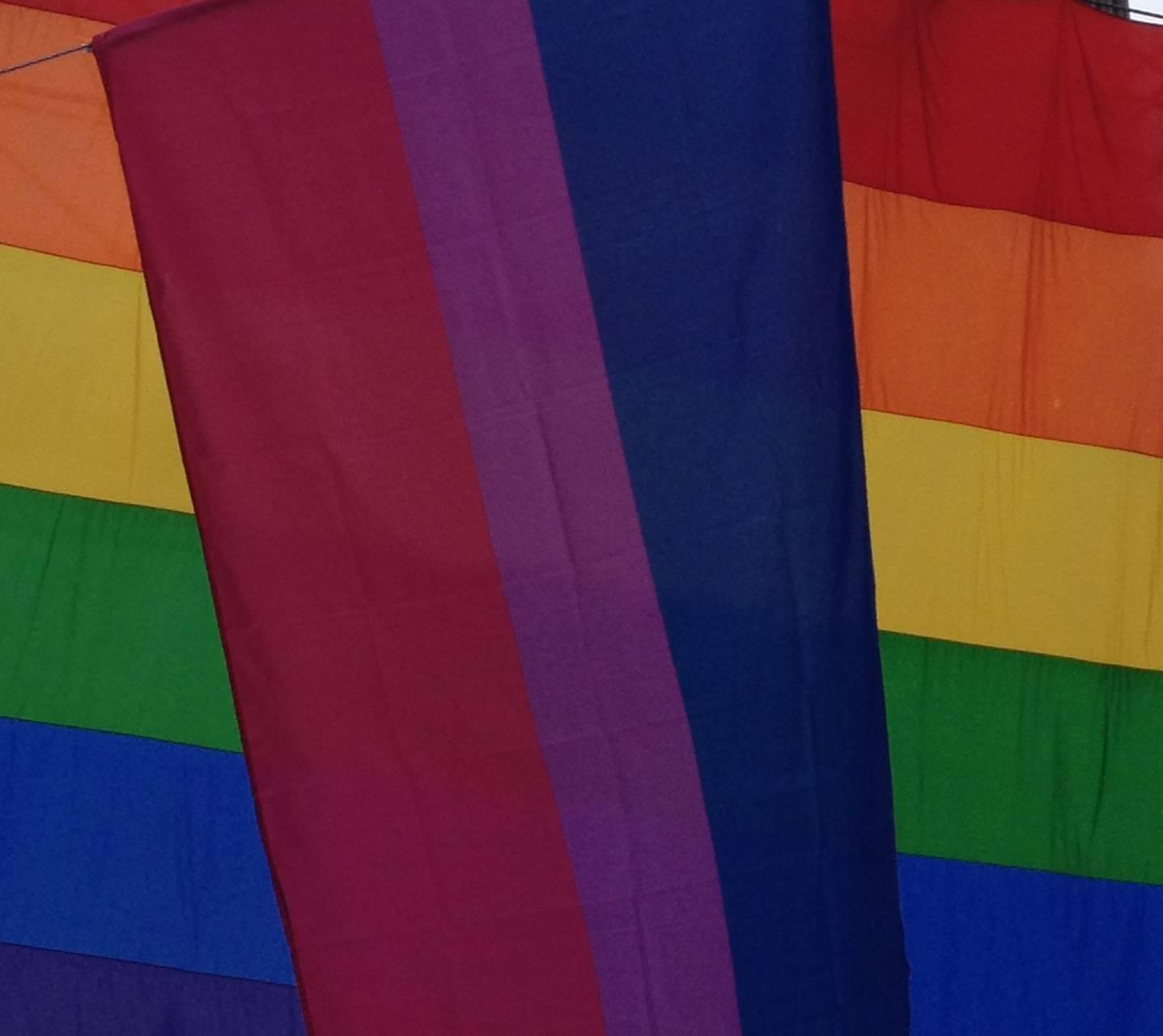 Lots of Pride